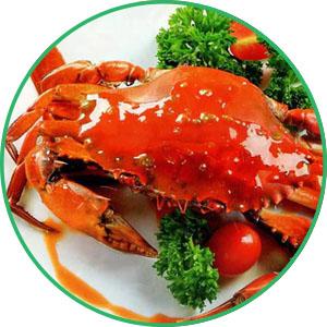 Chitosan có nhiều trong cua biển