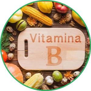Vitamin B1 và B6